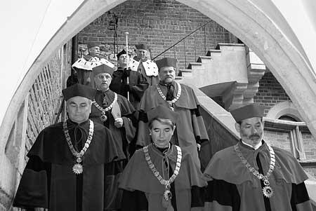 Rektoren und Professoren